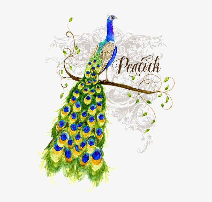 Bleed Area May Not Be Visible - Peacock On Tree Painting, transparent png #2692691