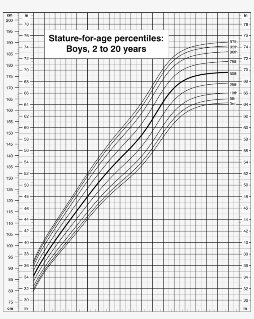 Stature For Age Percentiles, Boys, 20 To 200 Years, Cdc   Growth ...