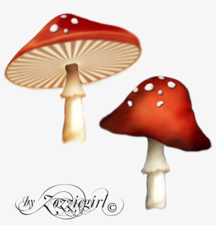 Free Icons Png - Enchanted Mushroom Png, transparent png #273667