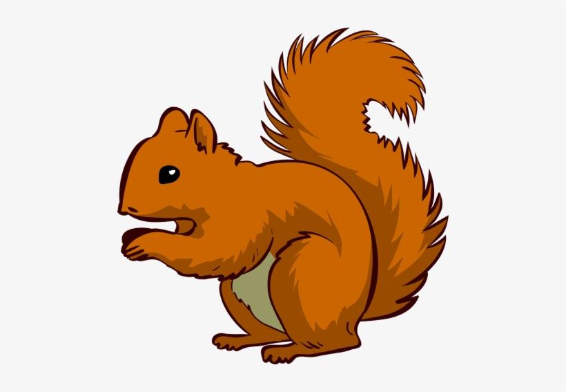 Clipart Squirrel - Squirrel Clipart Png, transparent png #275264
