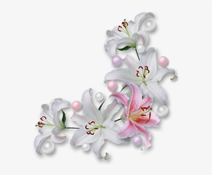 Gifs De Flores Com Fundos Transparentes, Flores Png