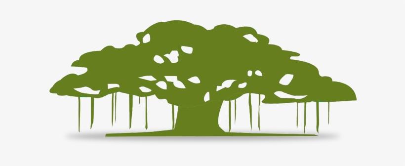 The Banyan Tree Philosophy The Banyan Tree Was Chosen - Symbol Of Banyan Tree, transparent png #2722950