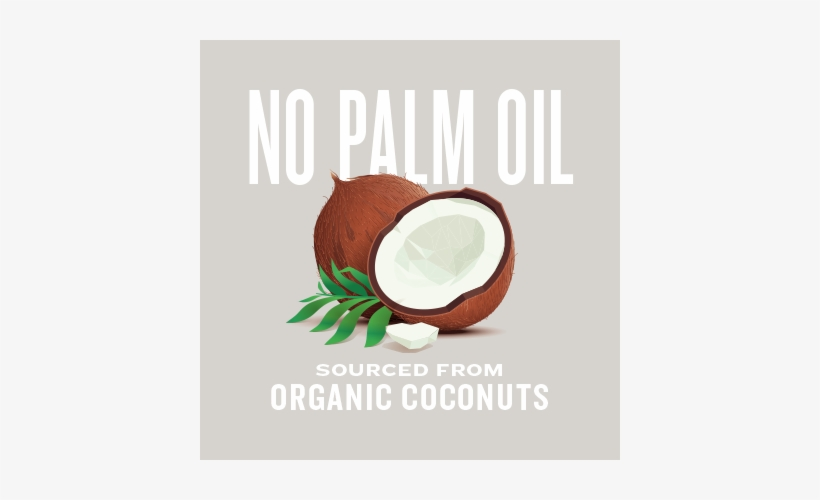 Natural Force Mct Oil Contains No Palm Oil And Is Sourced - Coconut Oil Illustration, transparent png #2739098