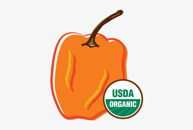Organic Habanero Pepper - Health Ranger Select Freeze Dried Organic Banana (2oz), transparent png #2796059