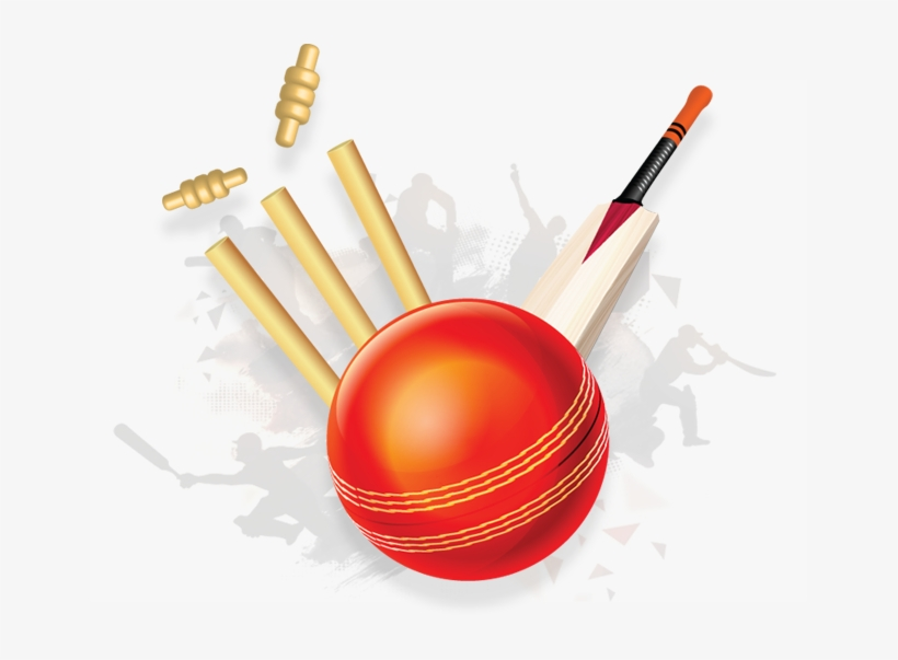 Vector Free Stock And Bat Png Transparent Images Pluspng - Cricket Bat And Ball Png, transparent png #280400