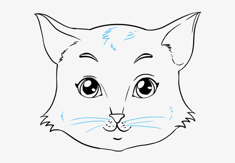How To Draw Cat Face Drawing Free Transparent Png Download Pngkey