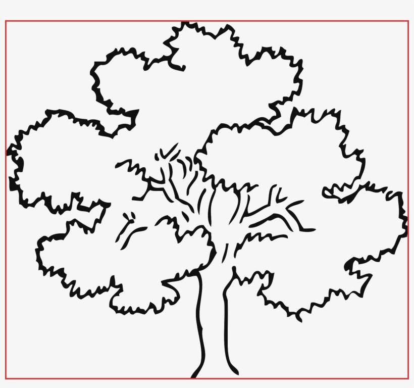 Line Drawing Tree At Getdrawings - Easy Oak Tree Drawing, transparent png #285879