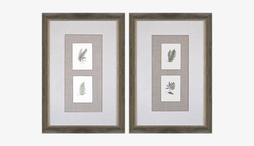 Ferns Pk/2 - Gracie Oaks 'ferns' 2 Piece Graphic Art Print Set, transparent png #287871
