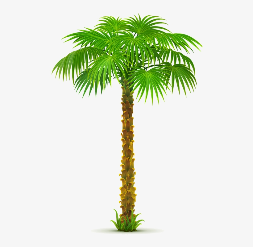8963e73a Palm Tree Png, Paper Palm Tree, - Date Tree Clip Art Png, transparent png #2810916
