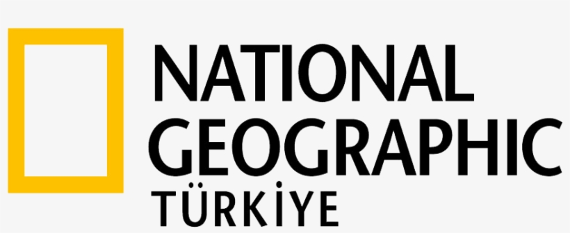 National Geographic Türkiye Logo - National Geographic Polska Logo, transparent png #2842541