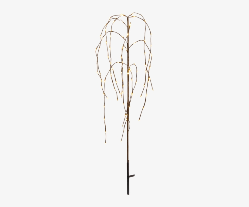 Decorative Tree Weeping Willow - Dekorationsträd Led Weeping Willow, 110cm - Star Trading, transparent png #2870039