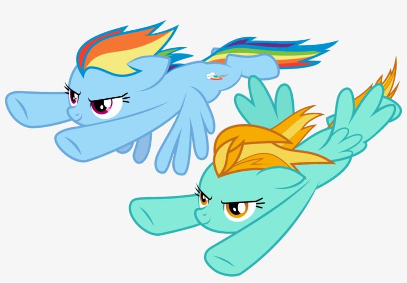 Drakizora, Lightning Dust, Rainbow Dash, Safe, Simple - Mlp Rainbow Dash X Lightning Dust, transparent png #2874846