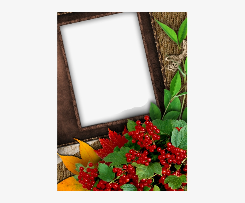 Nice Fall Png Photo Frame - Nice Photo Frame, transparent png #2878015