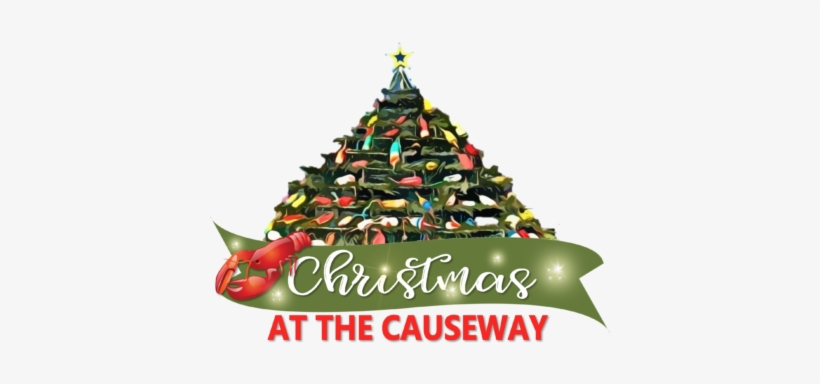 Join Us November 22 At 7pm As We Kick Off Our Christmas - Christmas Tree, transparent png #2884235