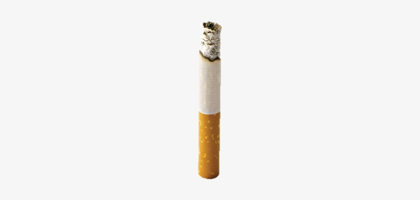 Então Como É Que Os Químicos Chegam Ao Interior Dos - Transparente Cigarro Png, transparent png #2890250