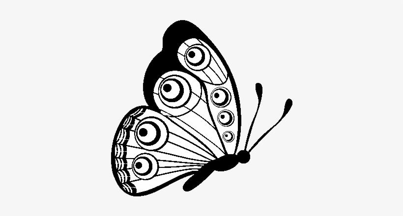 Desenho De Borboleta Direito Para Colorir Flying Butterfly