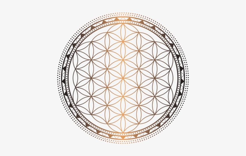 Sacred Geometry 7 Flower Of Life Coloring Pages Free Transparent Png Download Pngkey