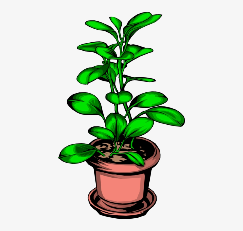 Vector Illustration Of Potted Plant - Gardens: History, Gardening And Plant Science, transparent png #2927499
