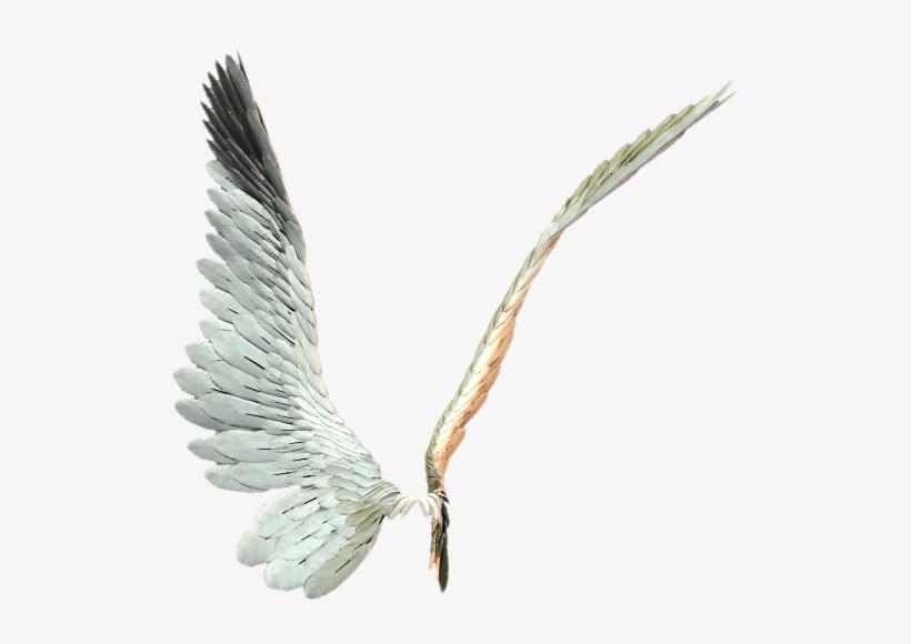Картинка крылья ангела анимация, воин картинка