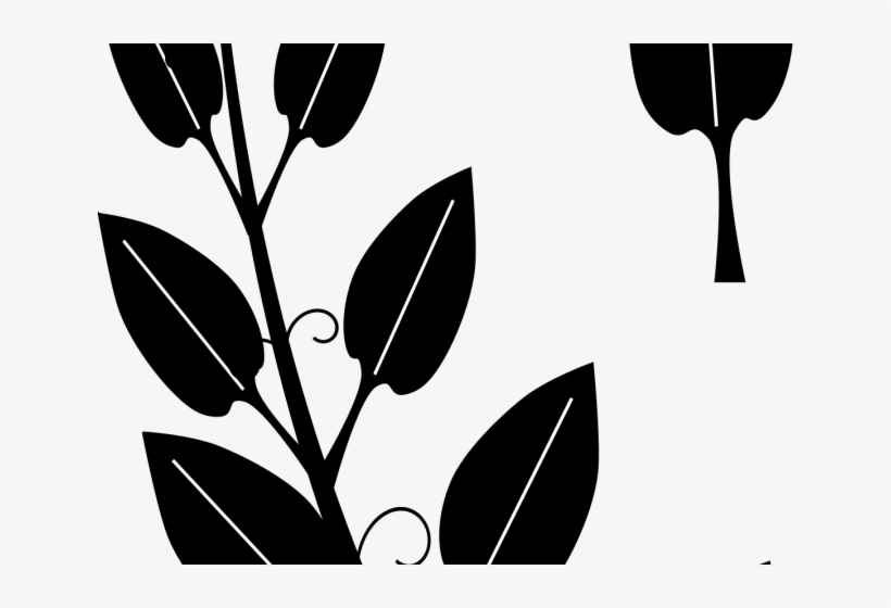 Vines Clipart Vine Leaves Black And White Silhouette Vine Clipart Free Transparent Png Download Pngkey