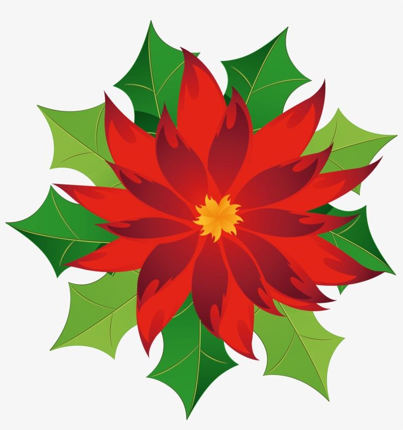 Christmas Poinsettia Clipart - Poinsettia Clip Art, transparent png #2950971