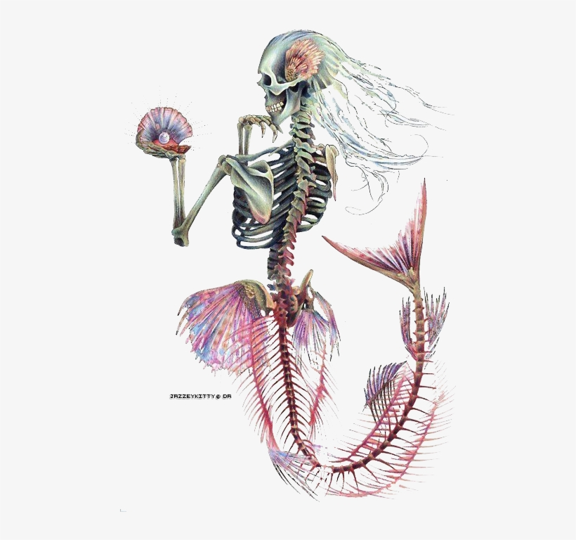 Tattoo Designs, Tattoo Ideas, Mermaid Skeleton, Skeleton - Mermaid Skeleton Tattoo Design, transparent png #2963414