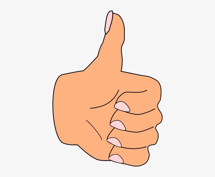 Thumbs Up Clip Art At Clker Com Vector Clip Art Online - Clip Art, transparent png #2971894