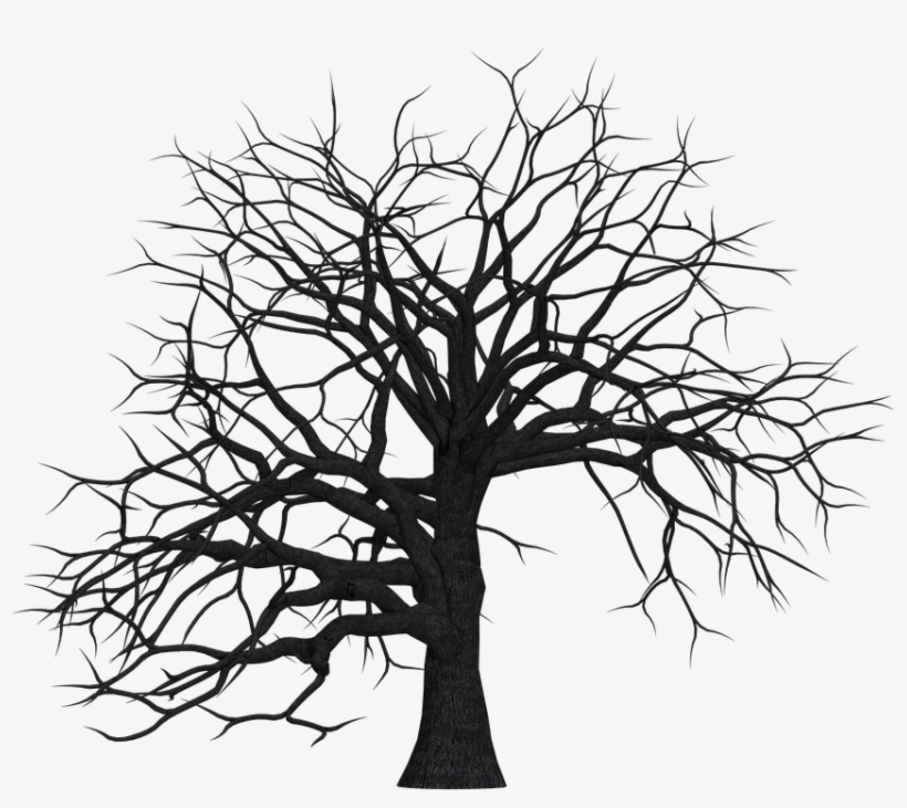 Tree, Digital Art, Isolated, Without Leaves, Leafless - Tree Trunk Silhouette Png, transparent png #2981018