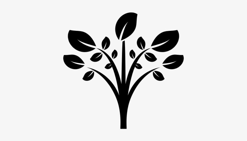 Leaves On Tree Branches Vector - Arbol En Blanco Y Negro En Png, transparent png #2981951