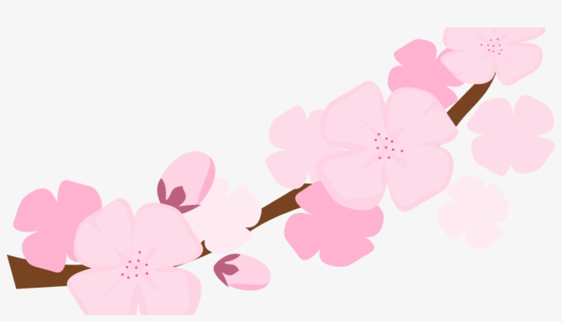 Clipart Resolution 1200*630 - Cherry Blossom Png Transparent, transparent png #2992492