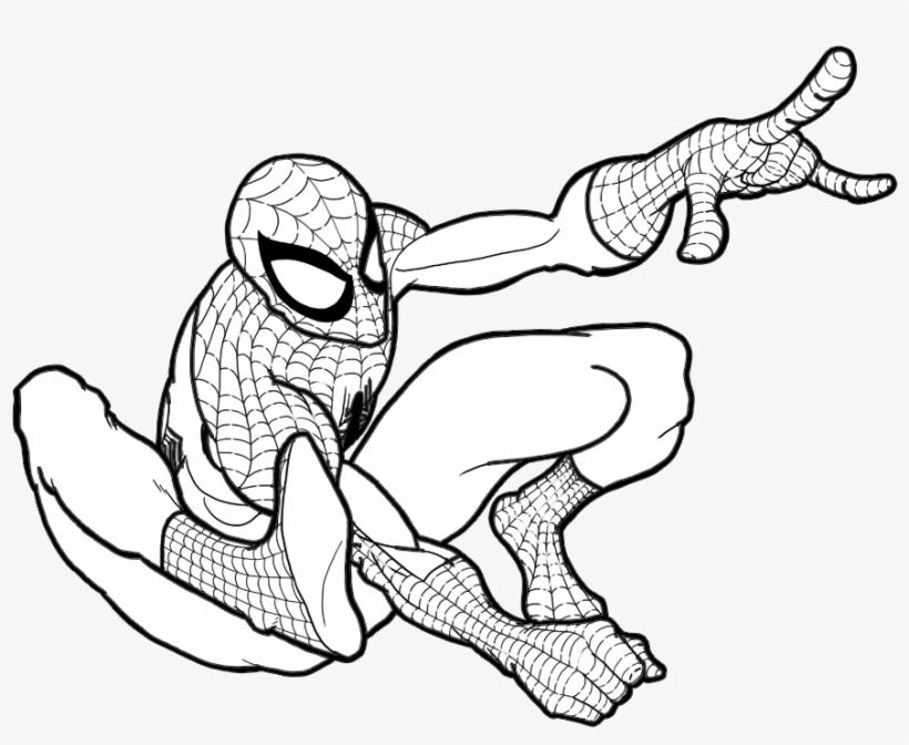 Homem Aranha Para Colorir Free Transparent Png Download Pngkey