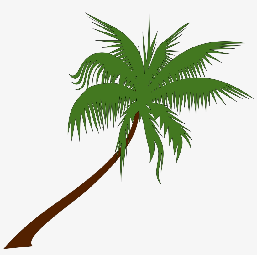 Palm Tree Drawing Png At Getdrawings - Summer Coconut Tree Clip Art, transparent png #32268