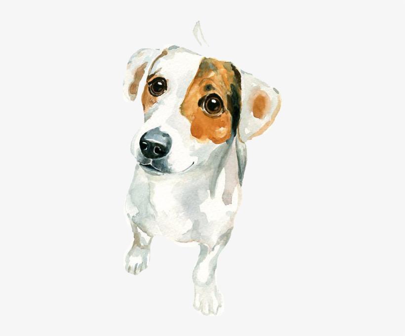 Jack Russell Terrier Watercolor Painting Art - Watercolor Painting Jack Russell, transparent png #32269