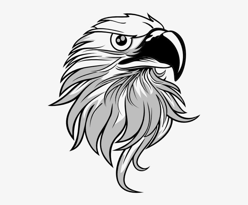 Eagle Clipart Black And White Black And White Eagle Png Free