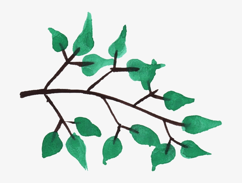 Watercolor Branch Png - Watercolor Tree Branches Png, transparent png #34340