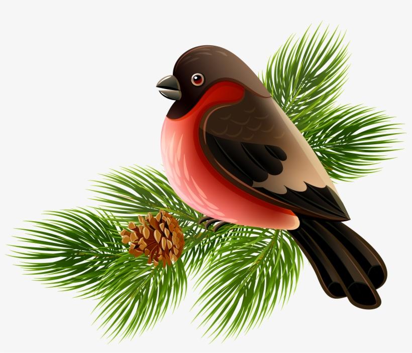 Bird Clip Art - Bird On Branch Png, transparent png #34722