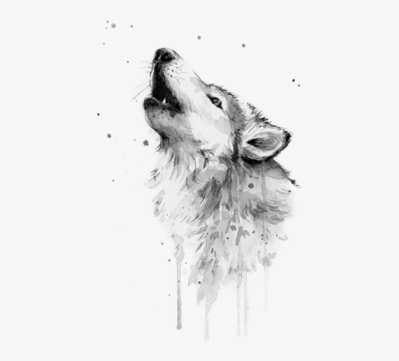Click And Drag To Re-position The Image, If Desired - Wolf Watercolor, transparent png #36102