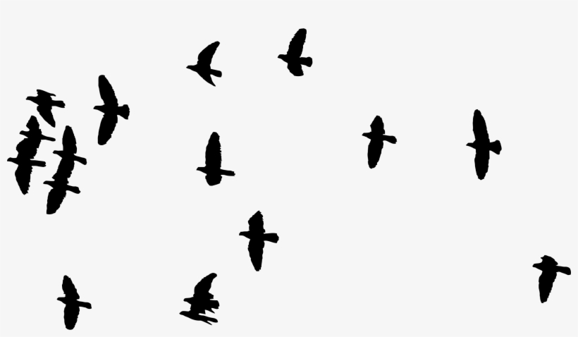 Png Royalty Free Stock Birds Svg Line Silhouette - Flock Of Birds Silhouette Png, transparent png #37038