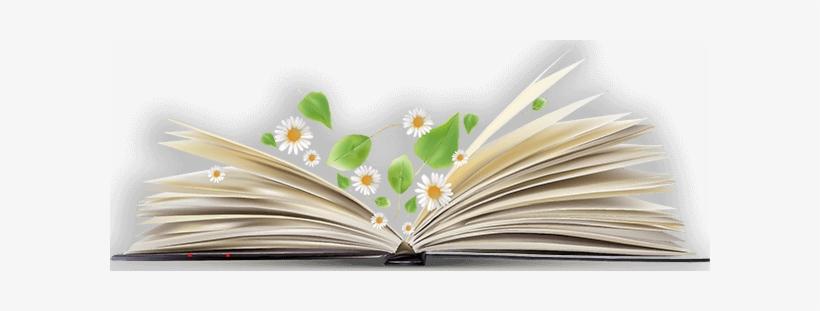 Open Book Png Image - Open Book Png Transparent, transparent png #38887