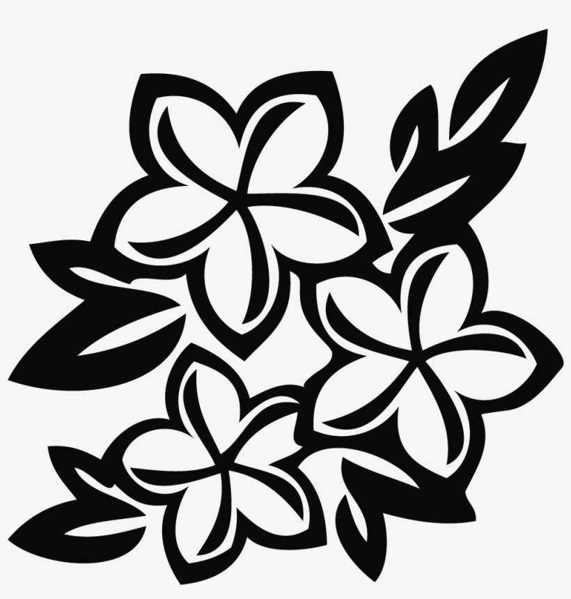 Drawing Flower Sampaguita