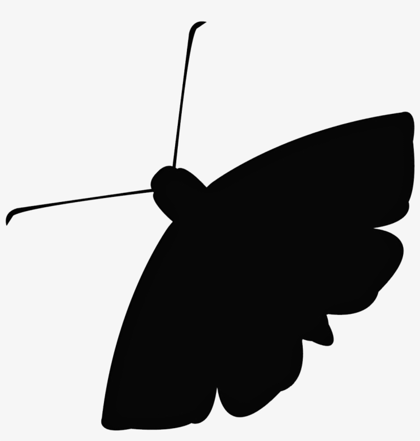 The Moth's Education Program Brings The Art And Craft - Moth Icon, transparent png #3011911