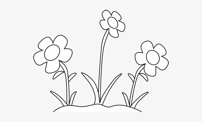 Black And White Flower Garden Clip Art Black And White - Flower Clipart Black And White Outline