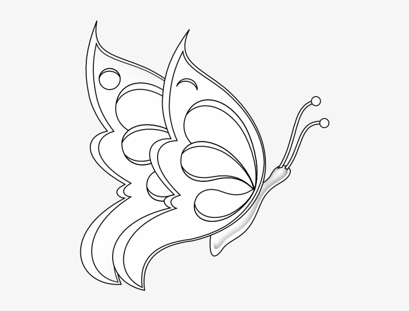 Butterfly 19 Black White Line Art 555px - Butterfly Sitting On A Flower Drawings, transparent png #3029485
