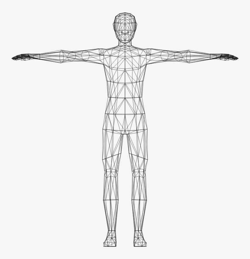 Body human. Clipart computer model free