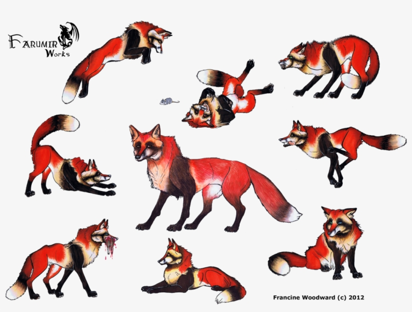 Large Size Of Fox Girl Drawing Easy Cute Step By Anime - Cat And Wolf Drawings, transparent png #3042713