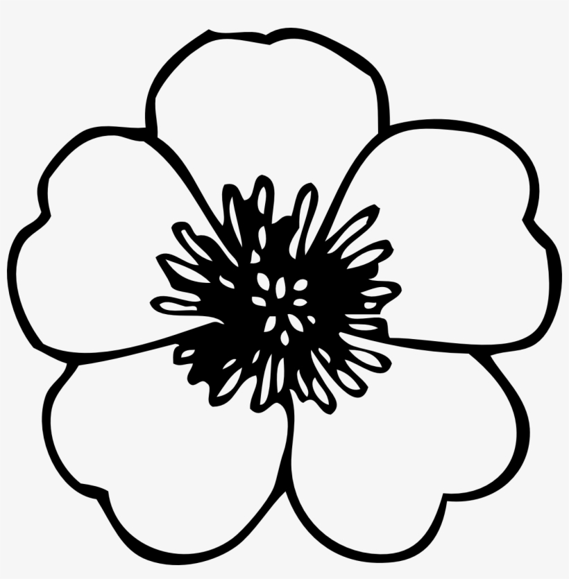 Drawings of flowers simple. Flower clipart black and