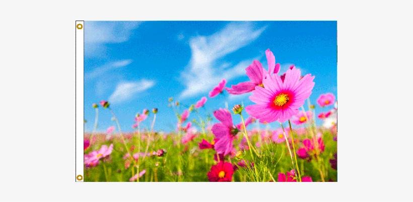 Spring Flowers Flag - Online Stores 3ft X 5ft Decorative Flag - Pink Flowers, transparent png #312459