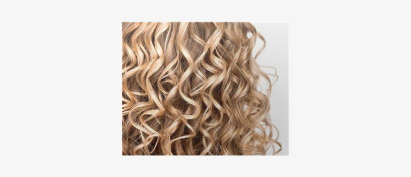 Wavy Curly Blonde Hair Closeup Curly Hair Up Close Free
