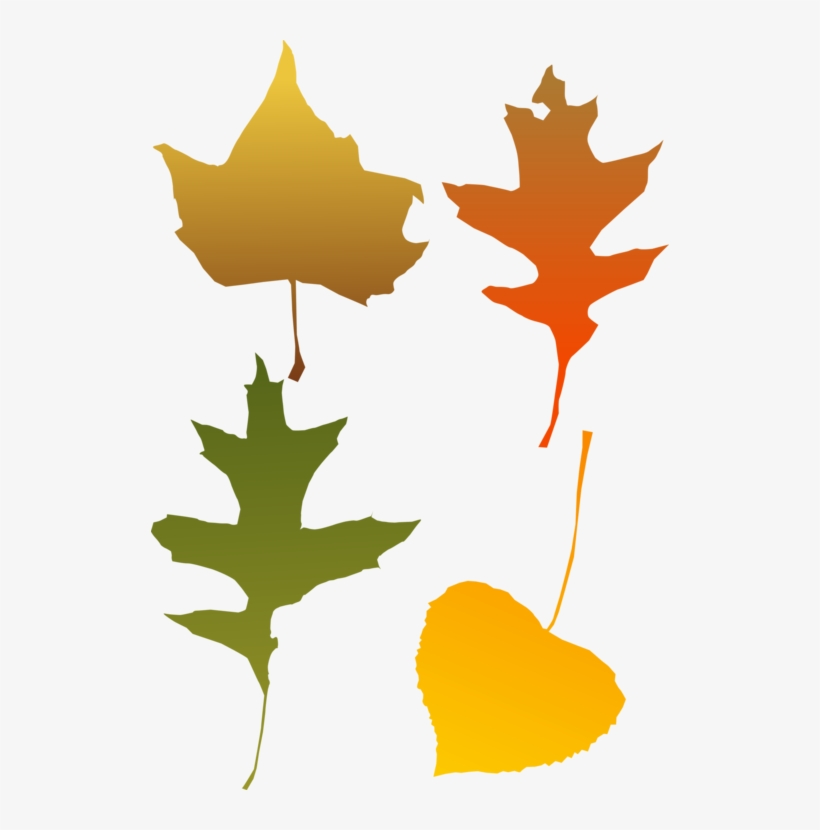 Autumn Leaf Color Red Maple Tree - Autumn Leaf Clip Art, transparent png #3112508