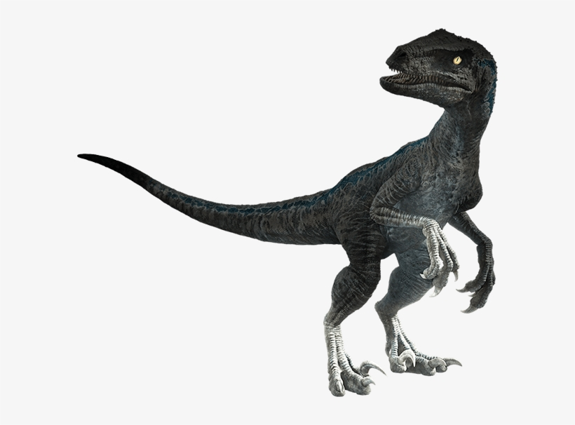 The Kaiju Brony Official Jurassic World Fallen Kingdom - Jurassic World Fallen Kingdom Dinosaurs Png, transparent png #3113567